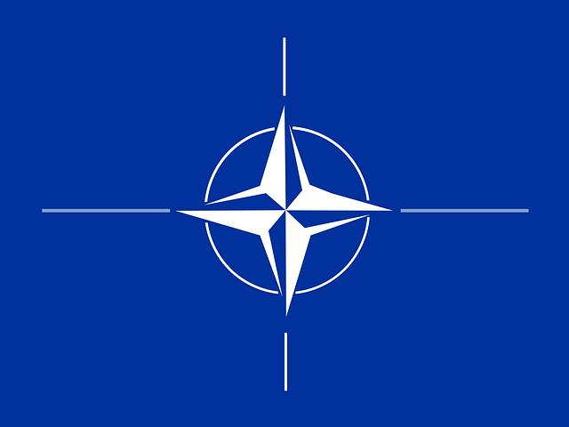 NATOに何を期待するか